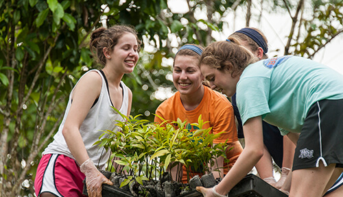Students carrying saplings for Costa Rica service project